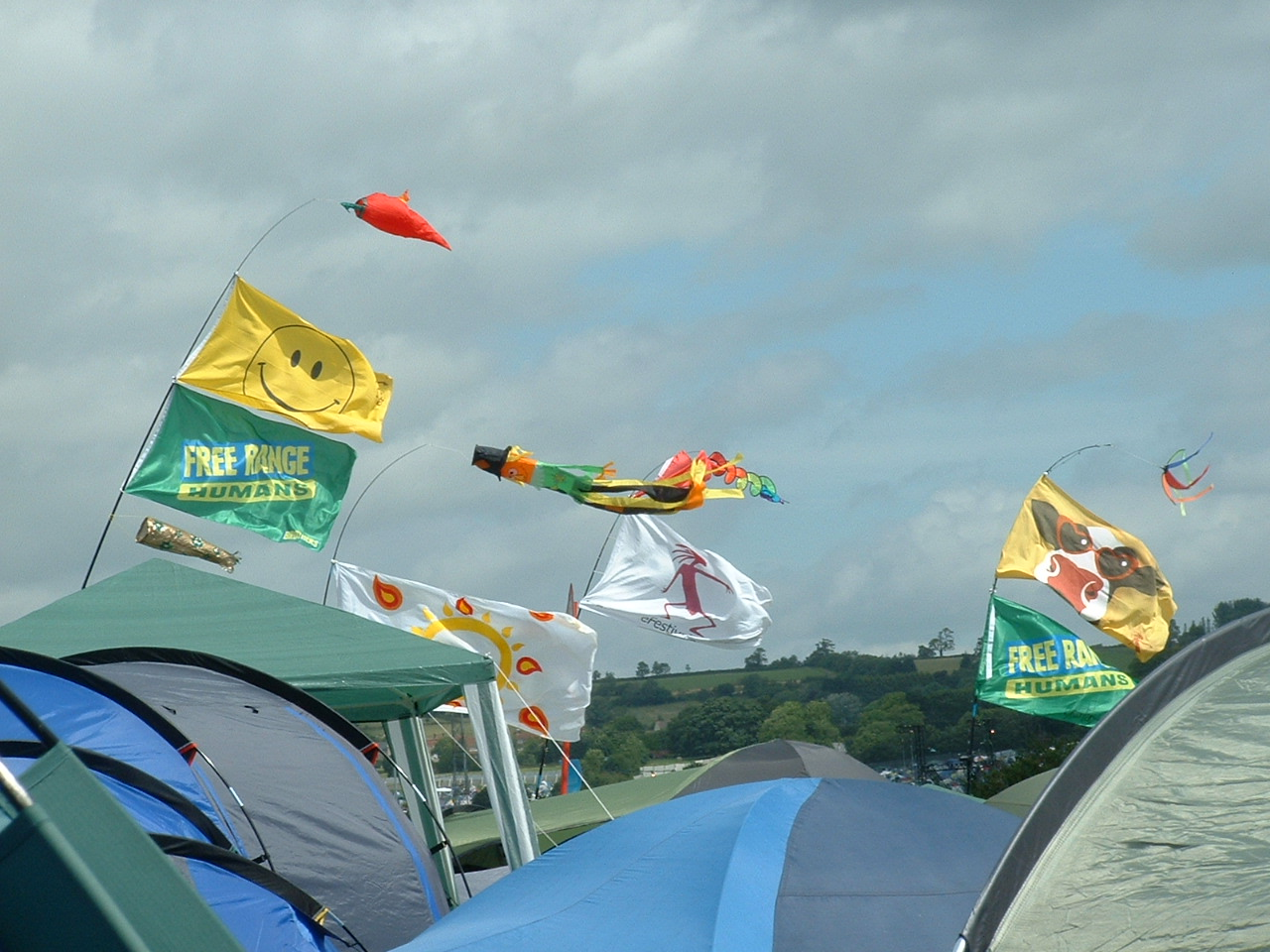 Flags @ camp