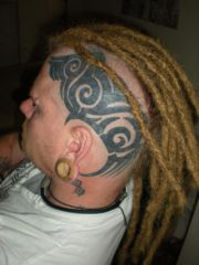 "Dreads with permanent extensions, added to 2.5"" hair"