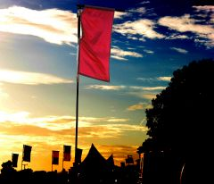 sunset at Jellyfest