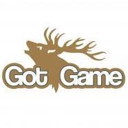 Got Game Ltd