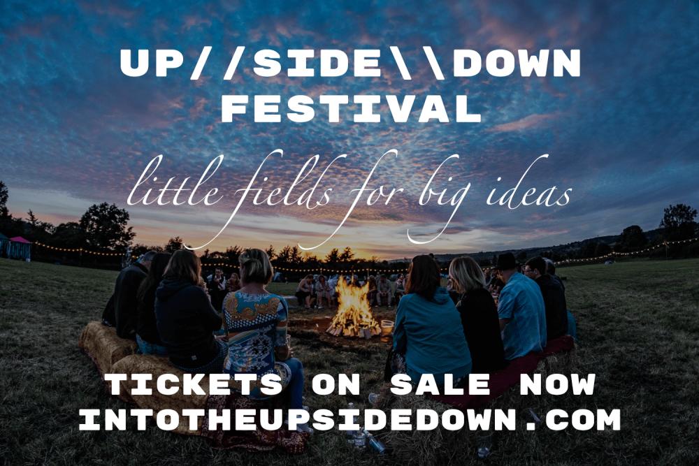 upsidedown festival little fields big ideas.png
