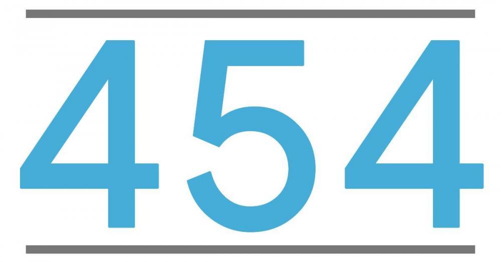454.jpg