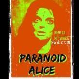 Paranoid Alice