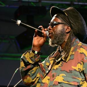 Macka B, Adrian Sherwood, Sister Nancy, & more for Positive Vibration Festival of Reggae 2018