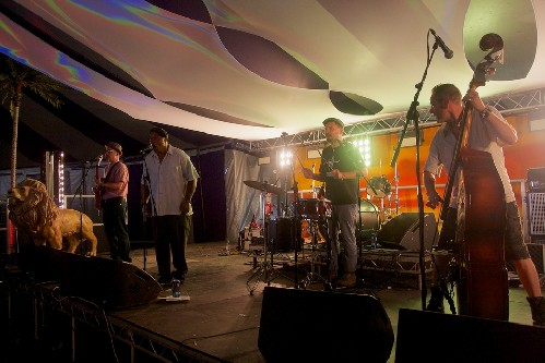 Black Kat Boppers @ Blissfields 2014