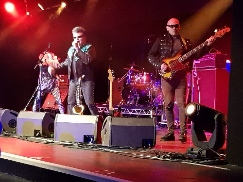 The Rezillos @ The Great British Alternative Music Festival (March) 2019